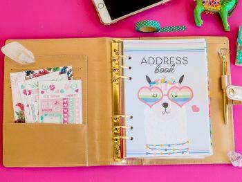 A5 Address Book Shop.CarrieElle.com